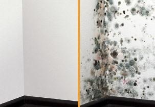 Las dos opciones: con pintura térmica + FNNANO y situación habitual con las condensaciones